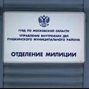 Отделения полиции Называевска